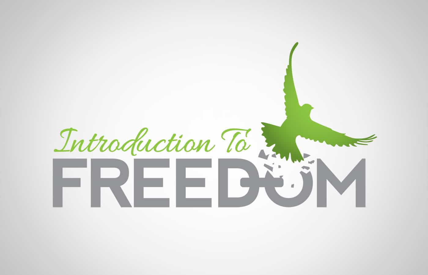 Edmonton Graphic Design | Introduction to Freedom Logo